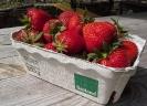 Erdbeeren (1)