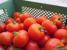 Tomaten (6)