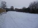 Winter (2)