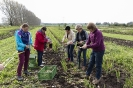 Gemüseretter 05